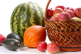Autumn harvesting — Stock Photo