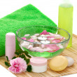 Stock Photo: Green spa