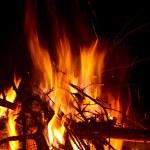 Campfire — Stock Photo #2566232