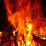 Campfire — Stock Photo #2566275