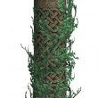 Column With Vines — Stock Photo
