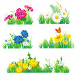 Flowers and grass - Stock Vector