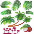 Tropical palms leaf - Stock Vector