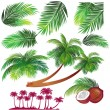 Tropical palms leaf — Stock Vector #2509248