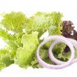 The lettuce and red onion — Stock Photo