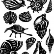 Set of decorative shell — Stock Vector