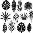 Tropical leaf — Vector de stock #2574263