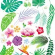 Tropical leaf and flowers — Stock Vector