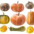 Set of pumpkins - Stock Photo