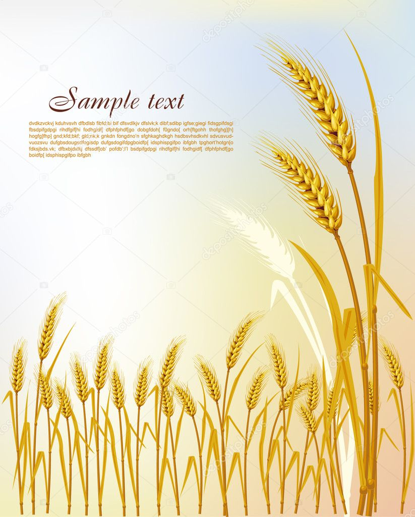 Background  with wheat  Stock Vector #2617314
