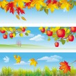 Three autumn banners — Stok Vektör