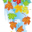 Vector de stock : Colorful banner from maple leaves