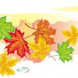 Colorful banner from maple leaves — Imagen vectorial