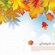 Background from autumn leaves — Stock Vector #2643539