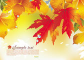 Background from autumn leaves — Stock Vector