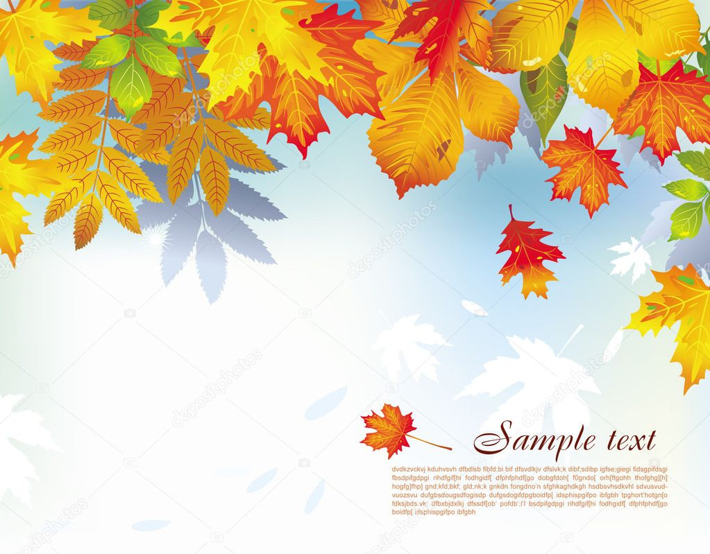Colorful background from autumn leaves — Stockvektor #2643539