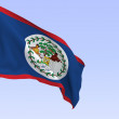 Belize flag — Stock Photo #2411872