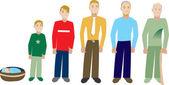 Progressi di età maschio 2 — Vettoriale Stock