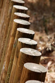 Poles in a fence — Stock Photo
