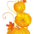Vettoriale Stock : Pumpkin Leaf
