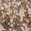 Dirty Grunge StoneTexture — Foto Stock