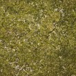 Dirty Grunge StoneTexture — Stock Photo