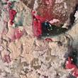 Grunge graffiti wall texture — Stock Photo