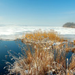 Winter lake — Stock Photo