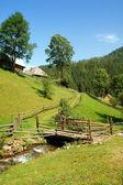 Landscape of Carpathians — Stock Photo