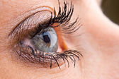 Close-up of a beautiful eye — Stock Photo
