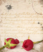 Two red roses vintage card — Stock Photo