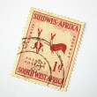 Old South West Africa postage stamp - Stock Photo