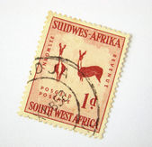 Old South West Africa postage stamp — Stock Photo