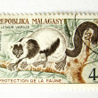 Madagascar postage stamp with monkey - Stock Photo