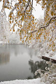 Winter city landscape with a pond — Стоковое фото