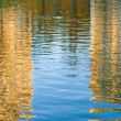 Stock Photo: Reflexion in water.
