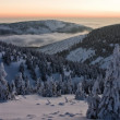 Twilight of the snowy landscape - Stock Photo