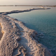 Stock Photo: Salt walkways at Dead Sea