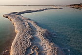 Salt walkways at the Dead Sea — Stock Photo