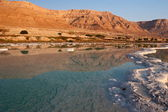 Dead Sea coast — Stock Photo