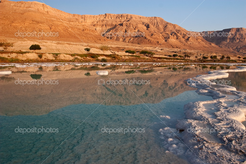  Dead Sea coast  Stock Photo #2464914