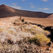 Stock Photo: Lanzarote hills