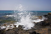 Wave crashing on the rocky reef — Stock Photo