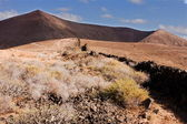 Lanzarote hills — Stock Photo