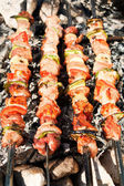 Barbecue with meat skewers — Stock Photo