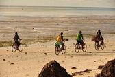 Zanzibar coast — Stock Photo