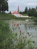 Старый пруд — Стоковое фото