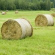 Haystack — Stock Photo #2600214