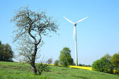Wind turbine and tree. — Stock Photo