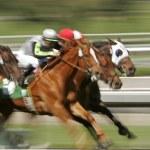 abstrakte Unschärfe-Pferderennen — Stockfoto